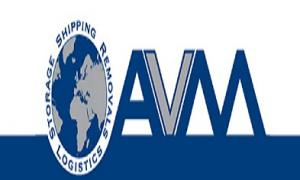 Avm Storage Ltd Logo